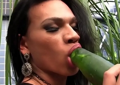 Latin chick shemale drills will not hear of ass with cucumber