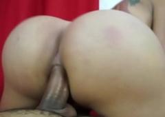 Latina TS Sheila Wandergirlt Bareback