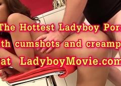 Catwoman Ladyboy Fucked Bareback