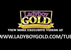 Take charge Ladyboy Anna Ground-breaking Pedigree Bareback