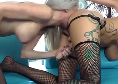 Tranny shemale getting mean with tranny