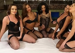 Tranny gangbang with 5 hot tgirls plus one lucky guy